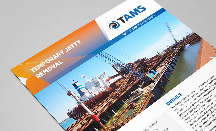 TAMS project sheet design - case study